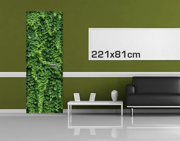 Product picture Door Photo Wall Mural - Ivy