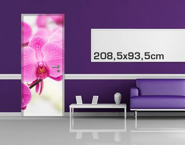 Product picture Door Photo Wall Mural - Close Orchid
