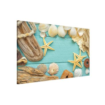 Product picture Magnetic Board - Shells And Driftwood -...