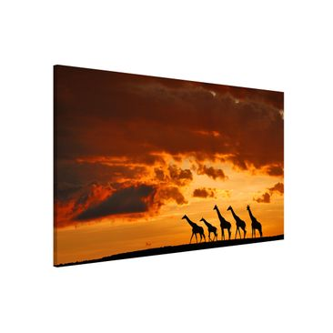 Product picture Magnetic Board - Five Giraffes -...