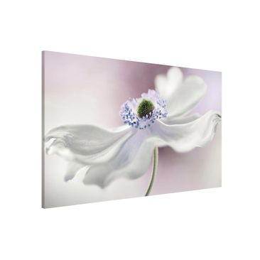 Product picture Magnetic Board - Anemones Breeze -...