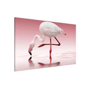 Produktfoto Magnettafel - Flamingo Dance - Memoboard Querformat 2:3