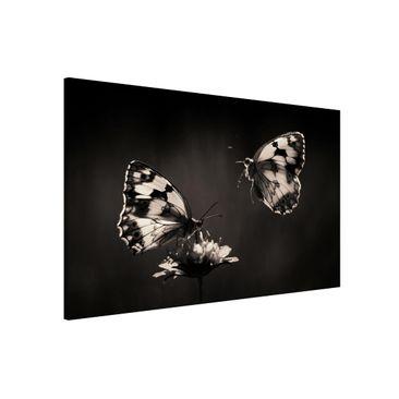 Produktfoto Magnettafel - Medioluto Norte - Memoboard Querformat 2:3