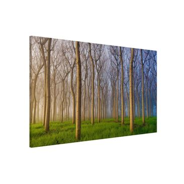 Product picture Magnetic Board - Morning In The Forest -...