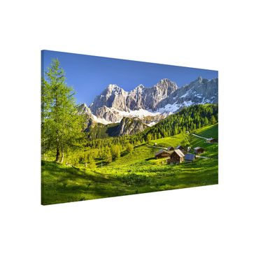 Product picture Magnetic Board - Styria Alpine Meadow -...