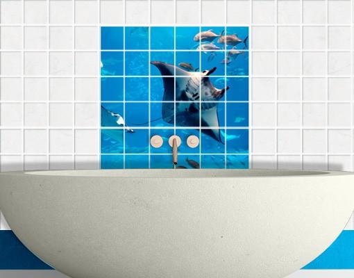 Produktfoto Fliesenbild Manta Ray