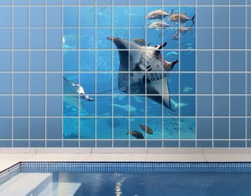 Product picture Tile Mural Manta Ray