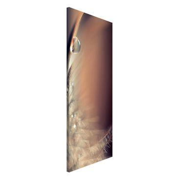 Produktfoto Magnettafel - Story of a Waterdrop - Memoboard Panorama Hochformat 2:1