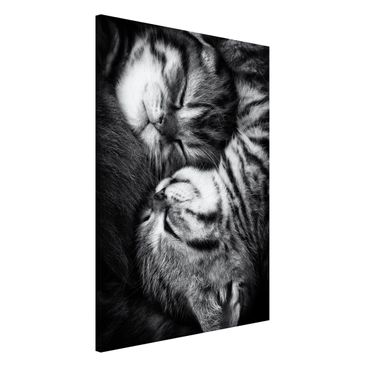 Product picture Magnetic Board - Two Kittens - Portrait...