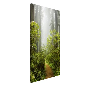 Produktfoto Magnettafel - Nebliger Waldpfad - Memoboard Hochformat 4:3