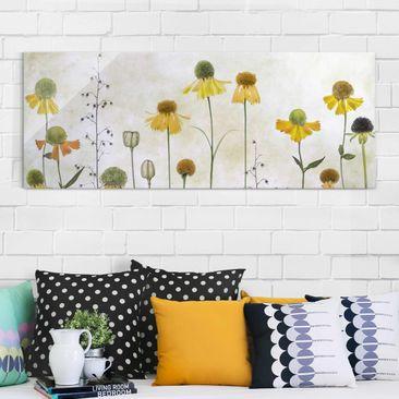 Produktfoto Glasbild - Zarte Helenium Blüten - Panorama