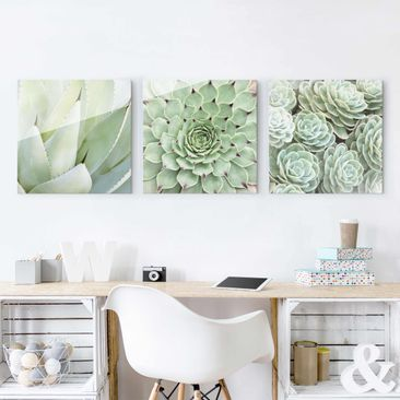 Product picture Print on Glass - Agave and Succulent...
