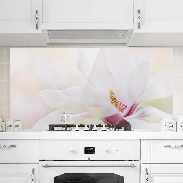 Produktfoto Spritzschutz Glas - Zarte Magnolienblüte - Querformat 1:2