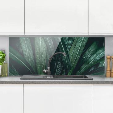 Produktfoto Spritzschutz Glas - Grüne Palmenblätter - Panorama