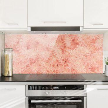 Produktfoto Spritzschutz Glas - Rosmarin Rosa - Panorama