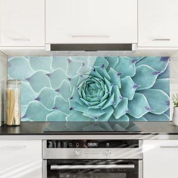 Immagine del prodotto Paraschizzi in vetro - Cactus Agave -...