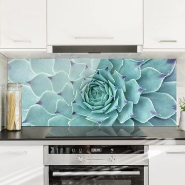 Produktfoto Spritzschutz Glas - Kaktus Agave - Panorama