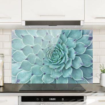 Produktfoto Spritzschutz Glas - Kaktus Agave - Querformat 2:3