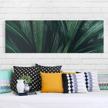 Produktfoto Leinwandbild - Grüne Palmenblätter -...