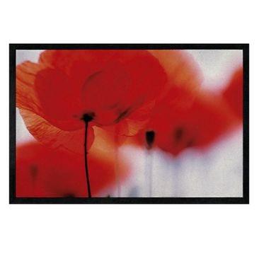 Immagine del prodotto Zerbino - Magic Poppies