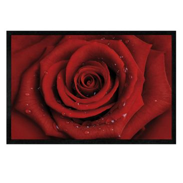 Immagine del prodotto Zerbino - Red rose with water drops