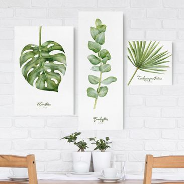 Product picture Canvas Art - Watercolor Botany - Collage...