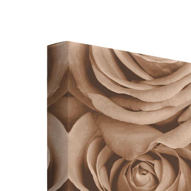 Produktfoto Leinwandbild 3-teilig - Vintage Rosen - Hoch 3:2, Keilrahmen Rückseite, Artikelnummer 225928-FB