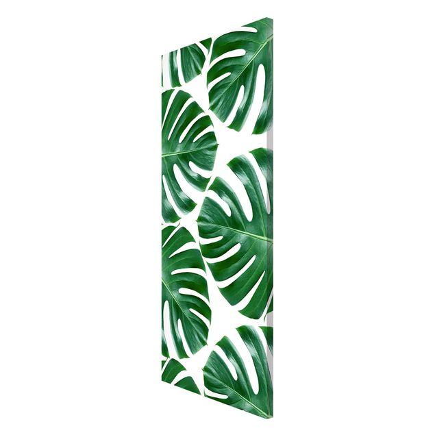 Produktfoto Magnettafel - Tropische grüne Blätter Monstera - Memoboard Panorama Hochformat 2:1
