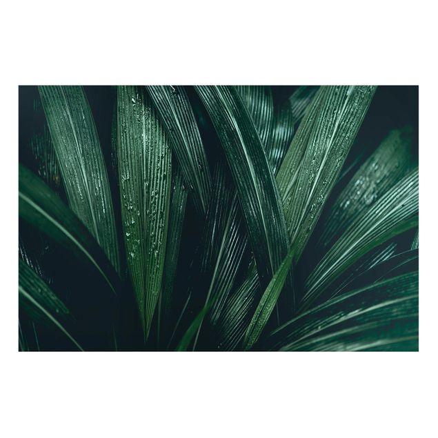 Produktfoto Magnettafel - Grüne Palmenblätter - Memoboard Querformat 2:3