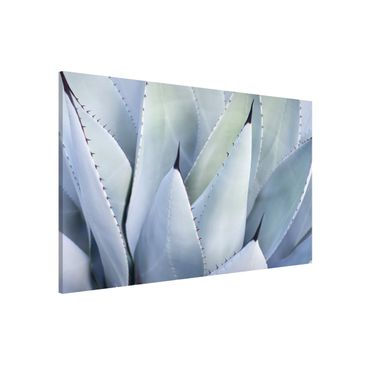 Product picture Magnetic Board - Agave - Landscape...