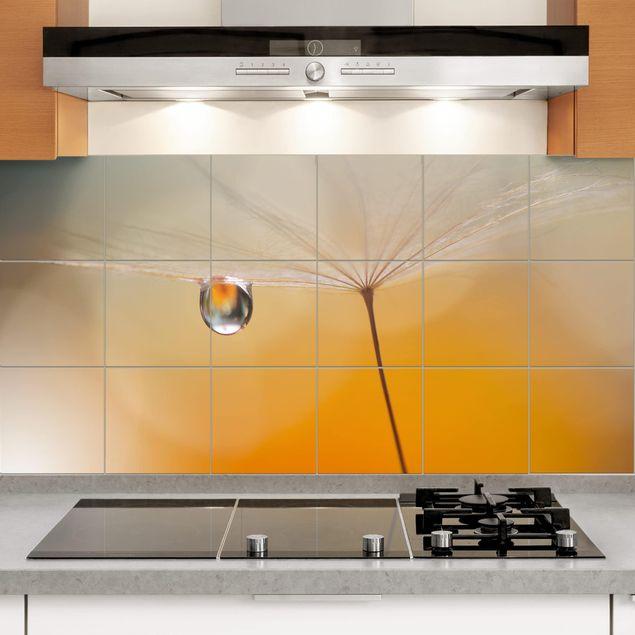 Produktfoto Fliesenbild - Pusteblume in Orange - Fliesensticker Set Querformat