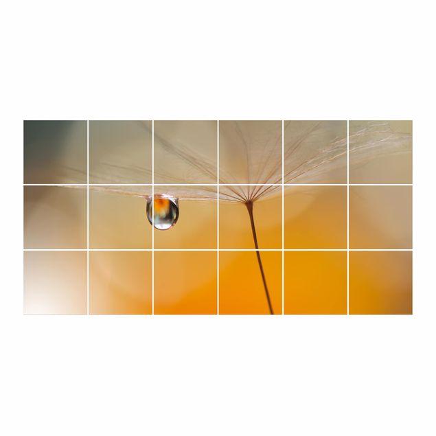 Produktfoto Fliesenbild - Pusteblume in Orange -...