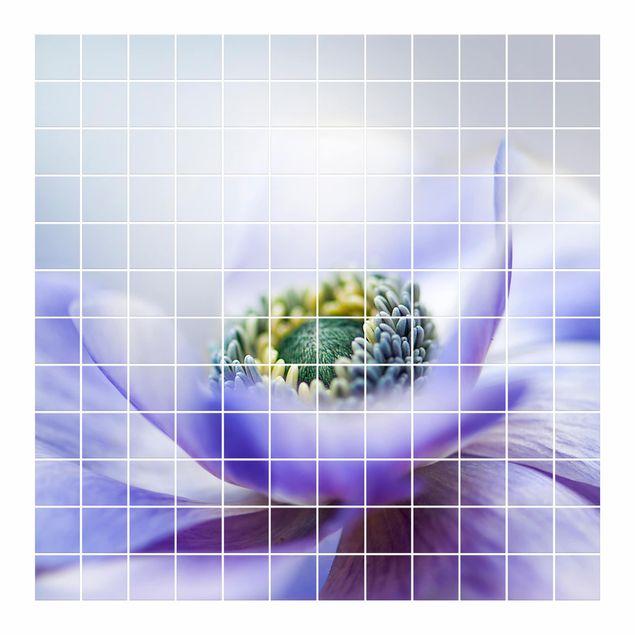 Produktfoto Fliesenbild - Anemone De Caen - Fliesensticker Set quadratisch