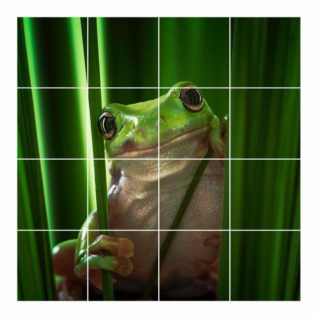 Produktfoto Fliesenbild - Fröhlicher Frosch - Fliesensticker Set quadratisch