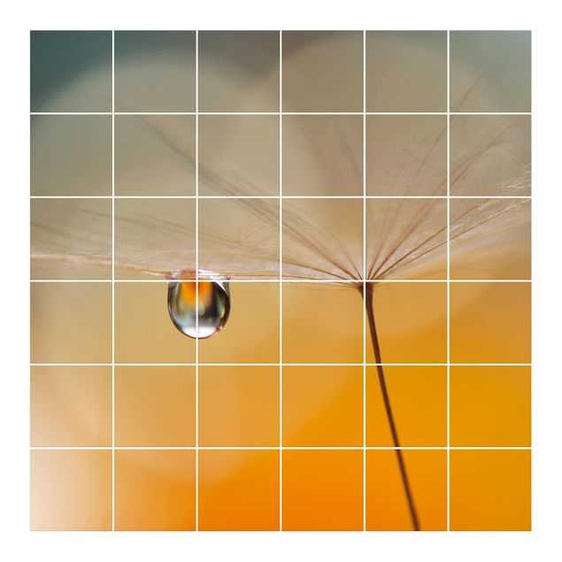 Produktfoto Fliesenbild - Pusteblume in Orange - Fliesensticker Set quadratisch