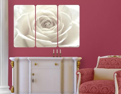 Produktfoto Rosenbild - selbstklebendes Wandbild Hübsche Rose Triptychon I - Blumenbild