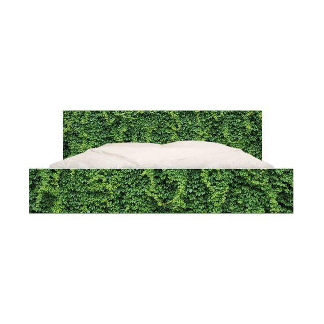 Produktfoto Möbelfolie für IKEA Malm Bett niedrig 160x200cm - Efeu