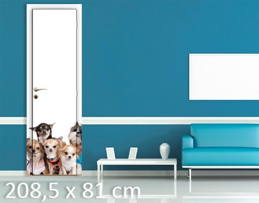 Produktfoto TürTapete Fünf Chihuahuas und ein Shi