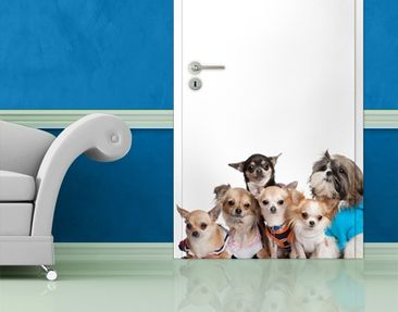 Produktfoto Door Wall Mural Chihuahuas and a Shi