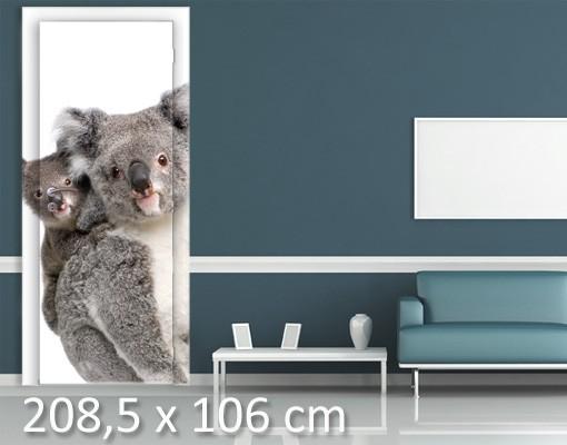 Produktfoto TürTapete Koala Bären