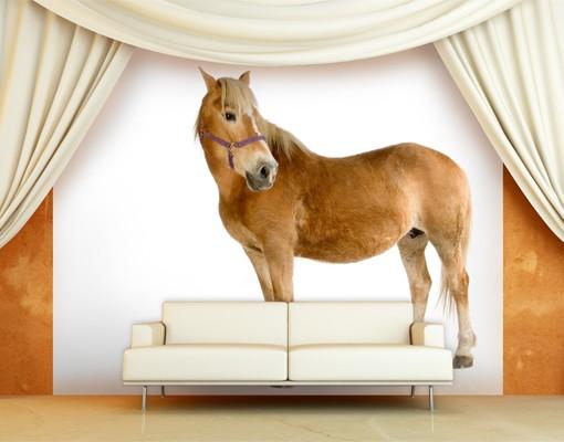 Kindertapete selbstklebend haflinger - Pferde tapete kinderzimmer ...