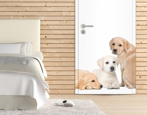 Produktfoto TürTapete Labradore