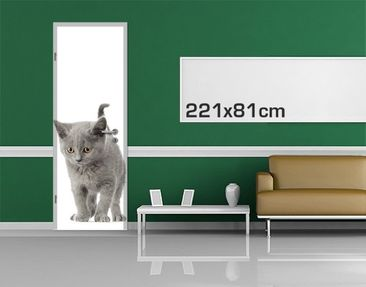 Product picture Door Wall Mural Mini Moggy
