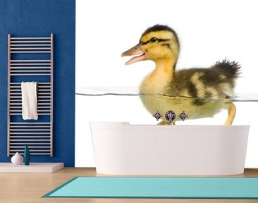 Produktfoto Photo Wall Mural Ducky I 288x270cm