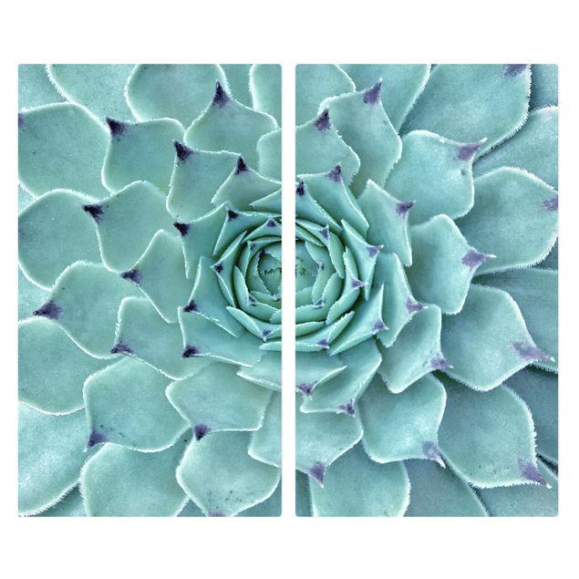 Produktfoto Herdabdeckplatte Glas - Kaktus Agave - 52x60cm, Frontalansicht, Artikelnummer 227749-FF