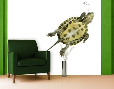 Product picture Photo Wall Mural Go Ahead Turtle