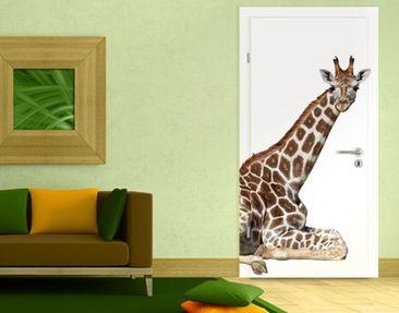 Produktfoto TürTapete Liegende Giraffe