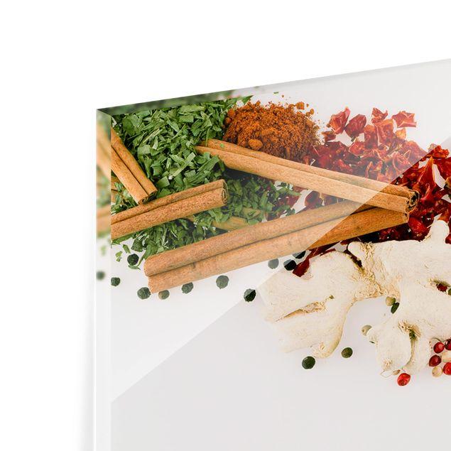 Produktfoto Spritzschutz Glas - Gewürze und getrocknete Kräuter - Panorama