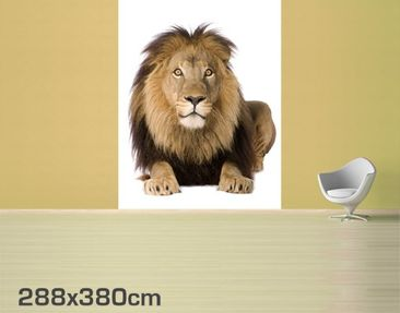 Product picture Photo Wall Mural Lion King II