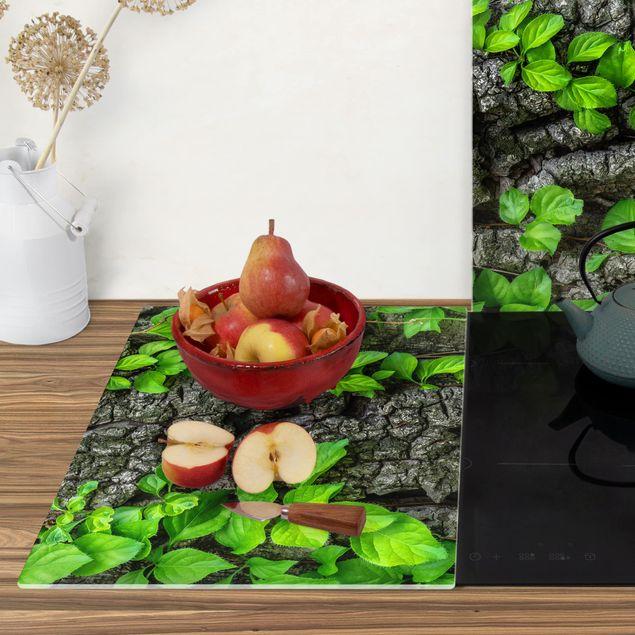 Produktfoto Herdabdeckplatte Glas - Efeuranken Baumrinde - 52x80cm, Anwendungsbeispiel, Artikelnummer -XWAF